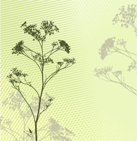 inmejorablemente: hierba silueta fondo  ideal para su uso