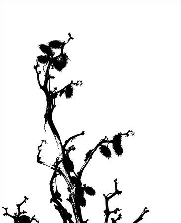 inmejorablemente: hierba  planta  silueta  vector. Lo ideal para su uso
