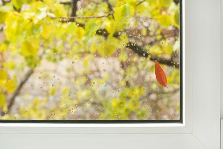 We look through a window at autumn.Drops of a rain on glass and one red leaf. But house is warm and is cosy.Focus on a window frame and red leaf photo
