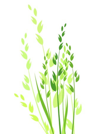 grass vector illustration  colored silhouette