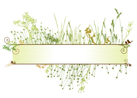 grass frame  vector  illustrarion  natural elements  Vector