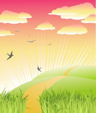 beautiful morning / nature / vector illustration Stock Vector - 2689718