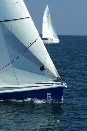 Sailing sport  regatta  The winner and losed