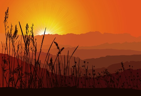 Beautiful sunset over mountains with grass silhouette  vector Layers are separated! The silhouette of a grass contains various elements Vector