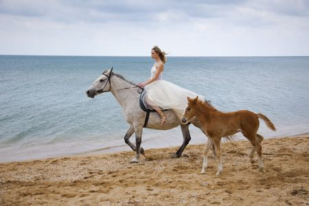 Bride and horses on the beach photo