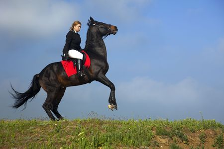 girl action: girl trains the horse  summer