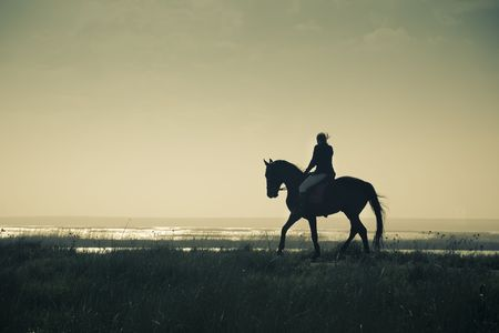 riding horse: A Rider Silhouette on Horseback  split toned  retro style