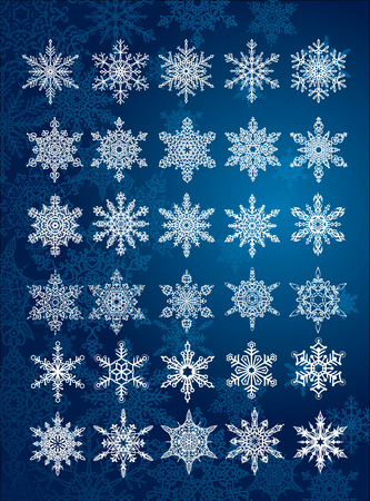 30 unique snowflakes in all  6 different sets  vector Vector