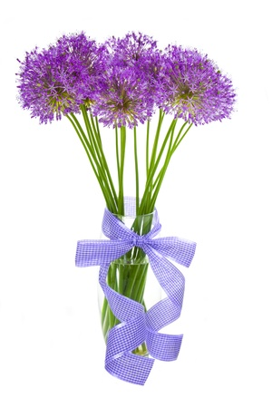 Bouqet of Allium  beautiful flowers  isolated on white photo