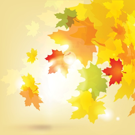 Autumn background with leaves and sun  eps10 Vector