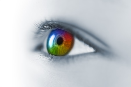 cornea: Multicolored Young Eye Macro