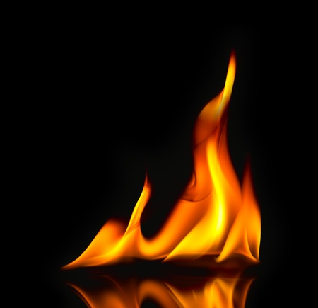 conflagration: Fire Flames  with reflection  beautiful modern style