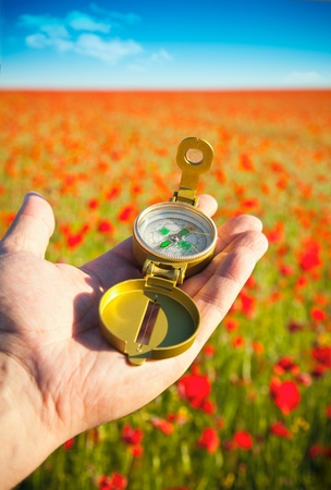 Compass in a Hand / Discovery / Beautiful Day / Red Poppies in Nature photo