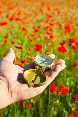 Compass in a Hand / Discovery / Beautiful Day / Red Poppies in Nature Stock Photo - 12431818