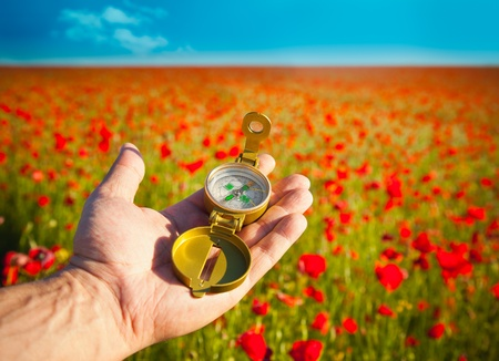 red poppies on green field: Compass in a Hand  Discovery  Beautiful Day  Red Poppies in Nature Stock Photo