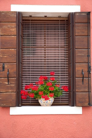 Old European Window  with flowers and wooden shutters photo