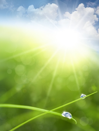 sun drop: Eco background with Sky, Grass, Water Drops and Cloud reflections into Raindrops