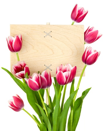 Beautiful Tulips and Empty Sign for message  wooden panel  isolated on a white background photo