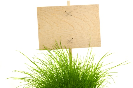 Empty wooden Sign with Fresh Green Grass  isolated on white photo
