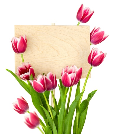 Beautiful Tulips and Empty Sign for message   wooden panel   isolated on a white background Stock Photo - 14393226