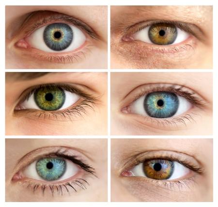 눈알: 6 진짜 다른 눈을 뜨고  거대한 크기  매크로 설정 스톡 사진