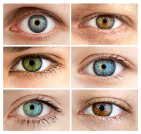 eyes open: Set of 6 Real Different Open Eyes  Huge Size  Macro Stock Photo