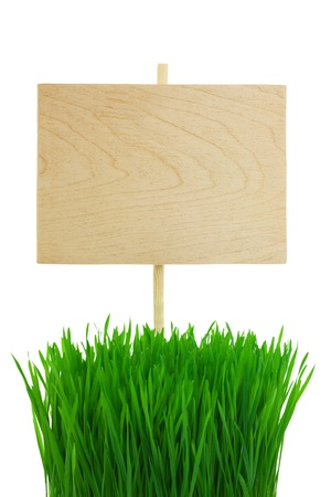 Empty wooden Sign with green Wheat Grass  isolated on white  photo