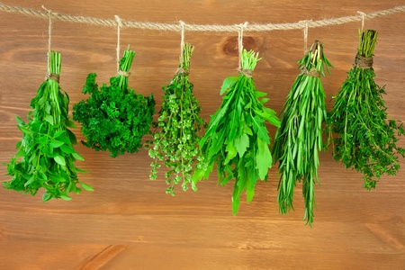 herbs white background: Fresh Herbs Collection is Hanging and Wooden texture  Vintage Style Stock Photo