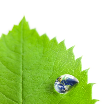 Earth  Big Water Drop on a Green Leaf    white background   Eco concept   Super Macro shotEarth photo from  http   visibleearth nasa gov photo