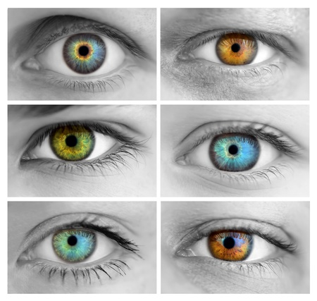 sight: Set of 6 Colorful Different Open Eyes  Huge Size  Macro Stock Photo