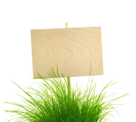 Empty Wooden Sign with Fresh Green Grass  isolated on white with copy space for your text photo