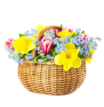 Beautiful Bouquet of  Spring Flowers into Basket  isolated on white background photo