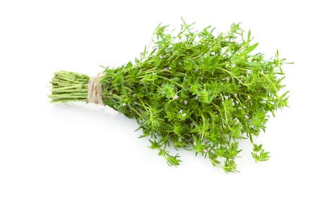 thymus: Bunch of fresh Thyme herbs    isolated on white background