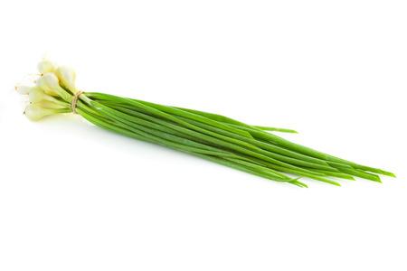 cebollin: El manojo de cebolletas frescas verdes aisladas sobre fondo blanco Foto de archivo