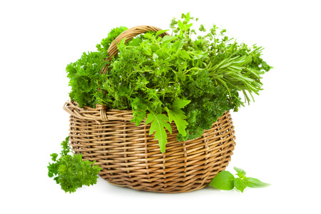 Collection of Fresh Spicy Herbs in Basket   isolated on white   thyme, basil, oregano, parsley, marjoram, sage and rosemary herbs Stock Photo