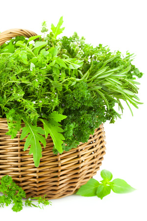Collection of Fresh Spicy Herbs in Basket   isolated on white   thyme, basil, oregano, parsley, marjoram, rucola, sage and rosemary herbs   Vertical composition photo