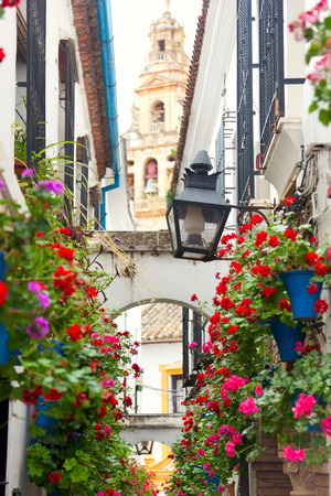 Famos Street decorated Pink and Red Flowers, Cordoba, Spain, Mediterranean Europe - travel