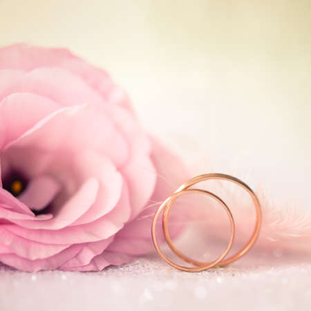 Love Wedding Background with Gold Rings and Beautiful Flower - macro photo