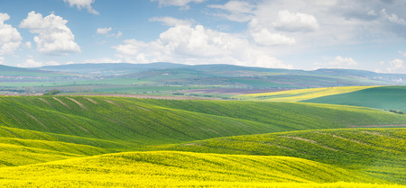 morava: Panoramic  of colorful yellow-green hills with blue sky and clouds - big size Stock Photo