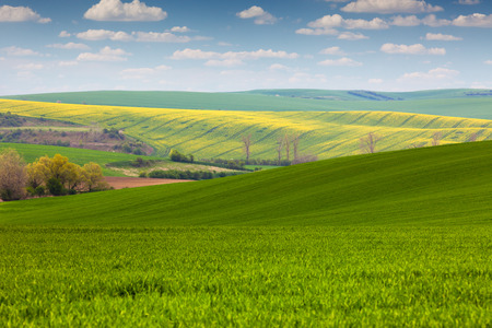 morava: Colorful Landscape of fields in countryside - fresh colors spring  landscape