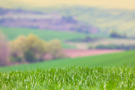 blured: Real Lens Blured Landscape background - focus on the front grass