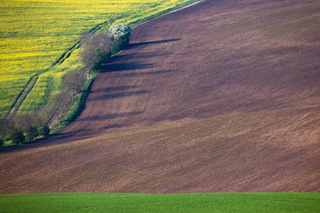 agriculture wallpaper: Geometric colorful fields landscape - countryside hills, agriculture concept for background or wallpaper Stock Photo