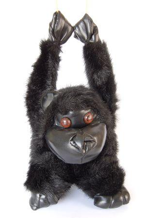 cuddly: Cuddly gorilla toy on white background