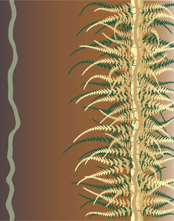 dense: Vector design of fern leaves