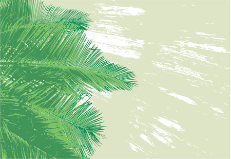 greenery: Vector background of coconut palm fronds