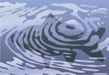 bach: Vector Design von Fischen in einem Pool