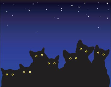 nocturnal: Vector illustration of kittens eyes at night