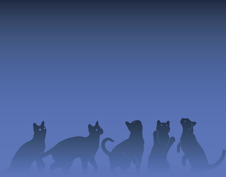 stray: Vector background design of inquisitive cats