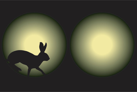 tense: Vector illustration of a rabbit caught in car headlights at night