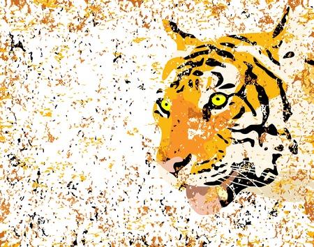 intense: Illustrazione vettoriale di una tigre con la testa grunge  Vettoriali